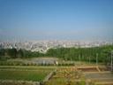 2011-053_s.jpg